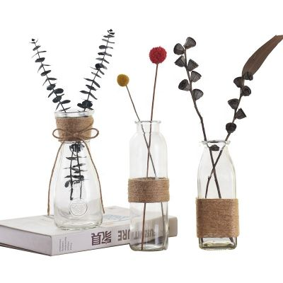Wholesale creative vase transparent glass living room decoration hydroponic dry flower vase
